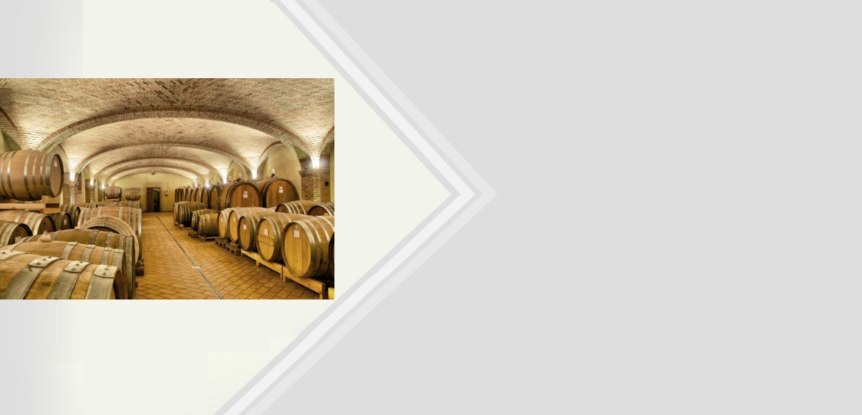 The best of Barolo 2
