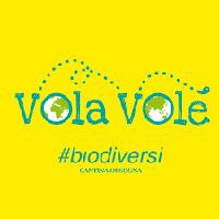 Vola Vole - Abruzzo